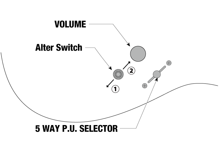 RG1120PBZ's control diagram