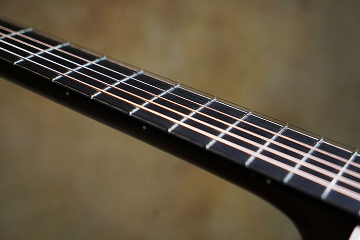 Ebony fretboard and bridge
