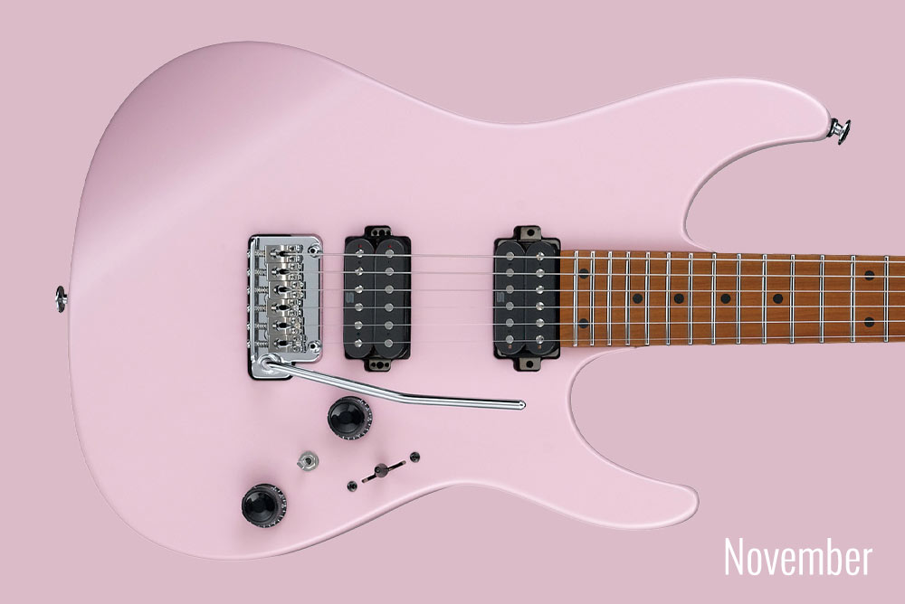 GUITAR OF THE MONTH November