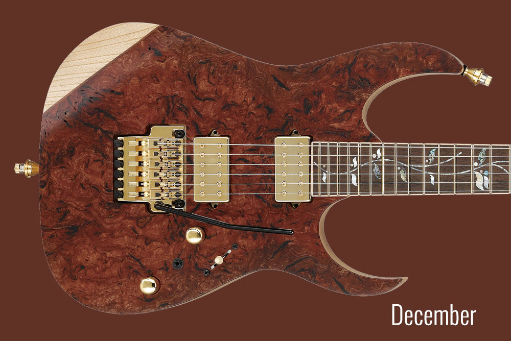 GUITAR OF THE MONTH December
