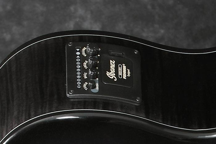 Ibanez AEQ-SP2 preamp w/Onboard tuner