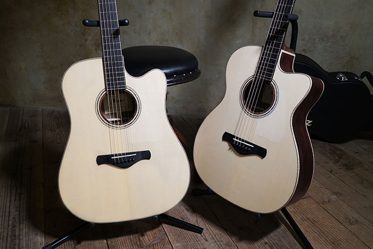 Ibanez Fingerstyle Collection