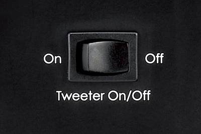 Tweeter On/Off Switch