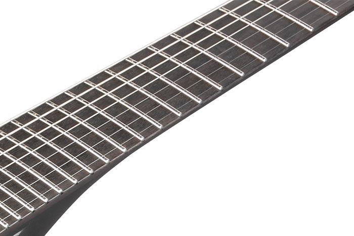 Ebony fretboard