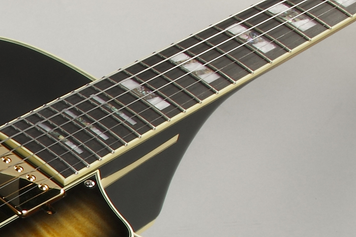 Ebony Fretboard w/ Artstar Fret Edge Treatment