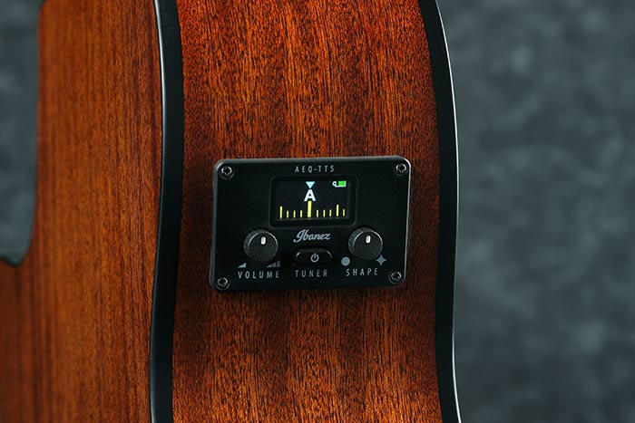 Ibanez AEQ-TTS preamp w/Onboard Tuner